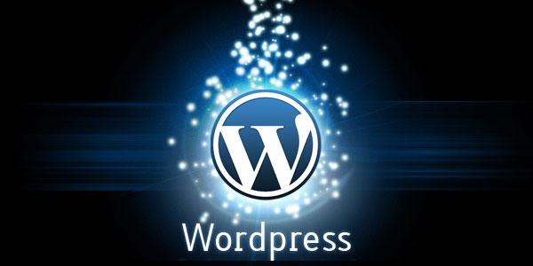 DigitalEffex WordPress